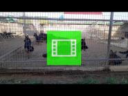 "Long-haired puppies of the German Shepherd Breeding Kennel ""Team Zilber Wasserfall"" / video 01 /"