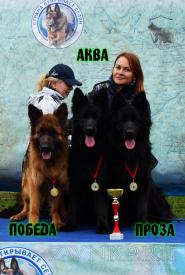 06_MV_OS_Smolensk_2021_POBEDA_AKVA_PROZA